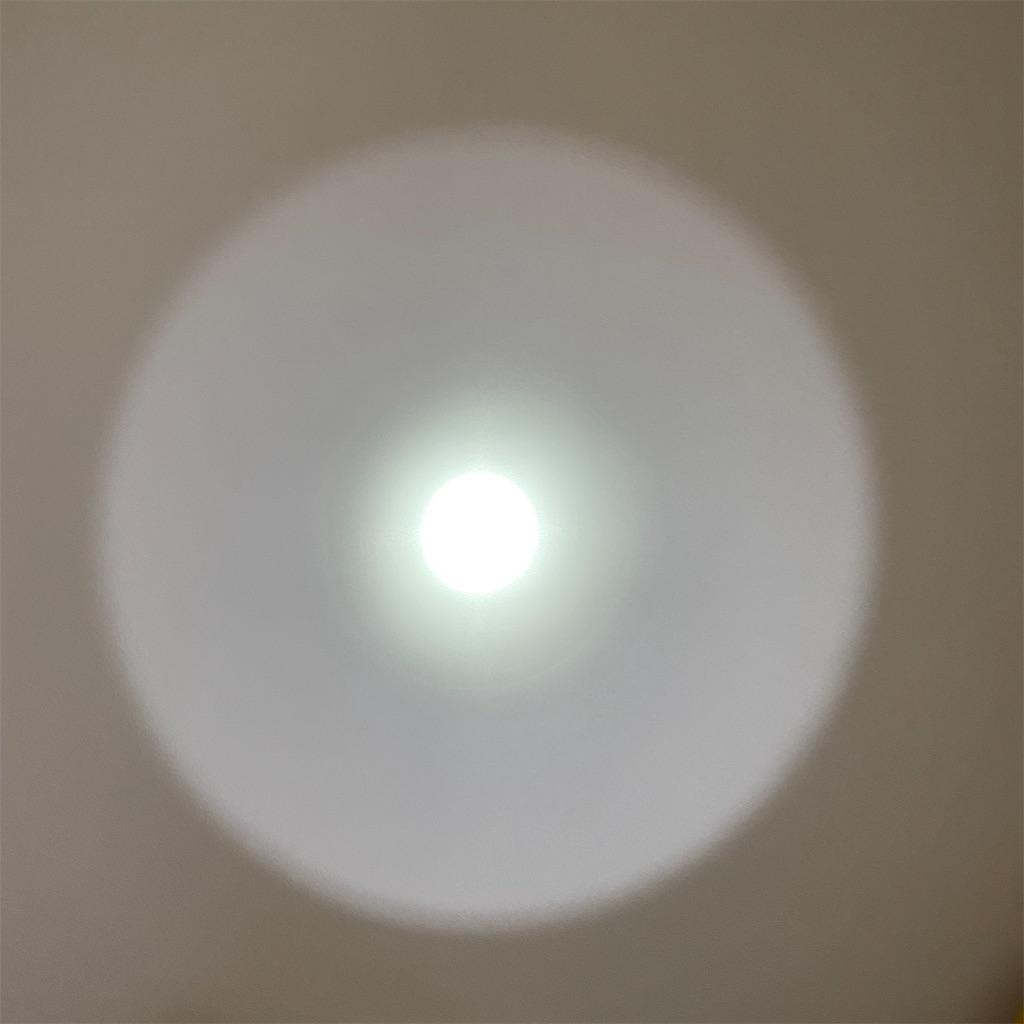 f:id:miapom618:20200516235409j:image