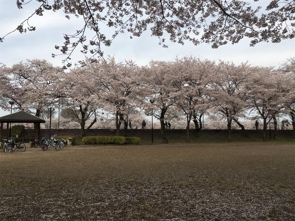 f:id:mibugawa:20170410212221j:image