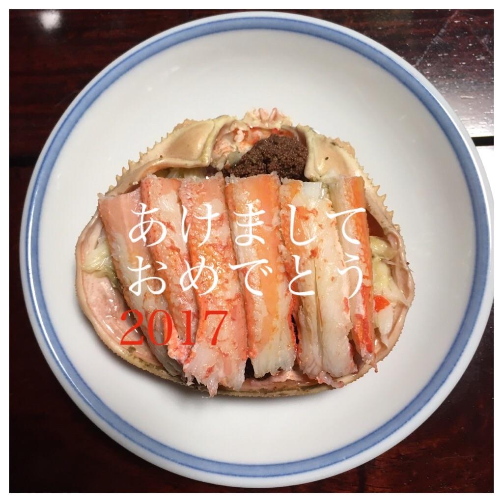f:id:mica_ueda:20170104170940j:image