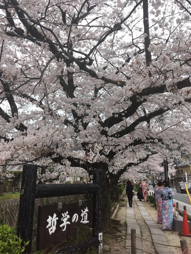 f:id:mica_ueda:20200407155317j:image