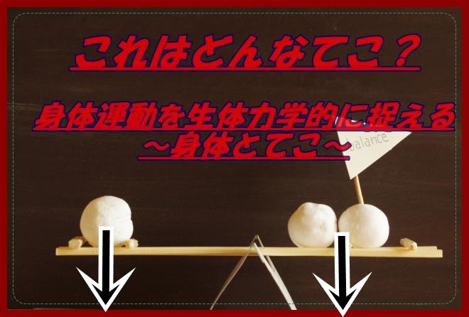 f:id:micchiiiiiii_pt:20200503005602j:plain