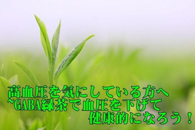 高血圧を気にしている方へ~GABA緑茶を飲んで健康になろう