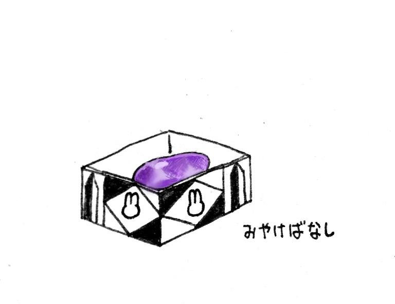 f:id:michemiyache:20170526235222j:plain