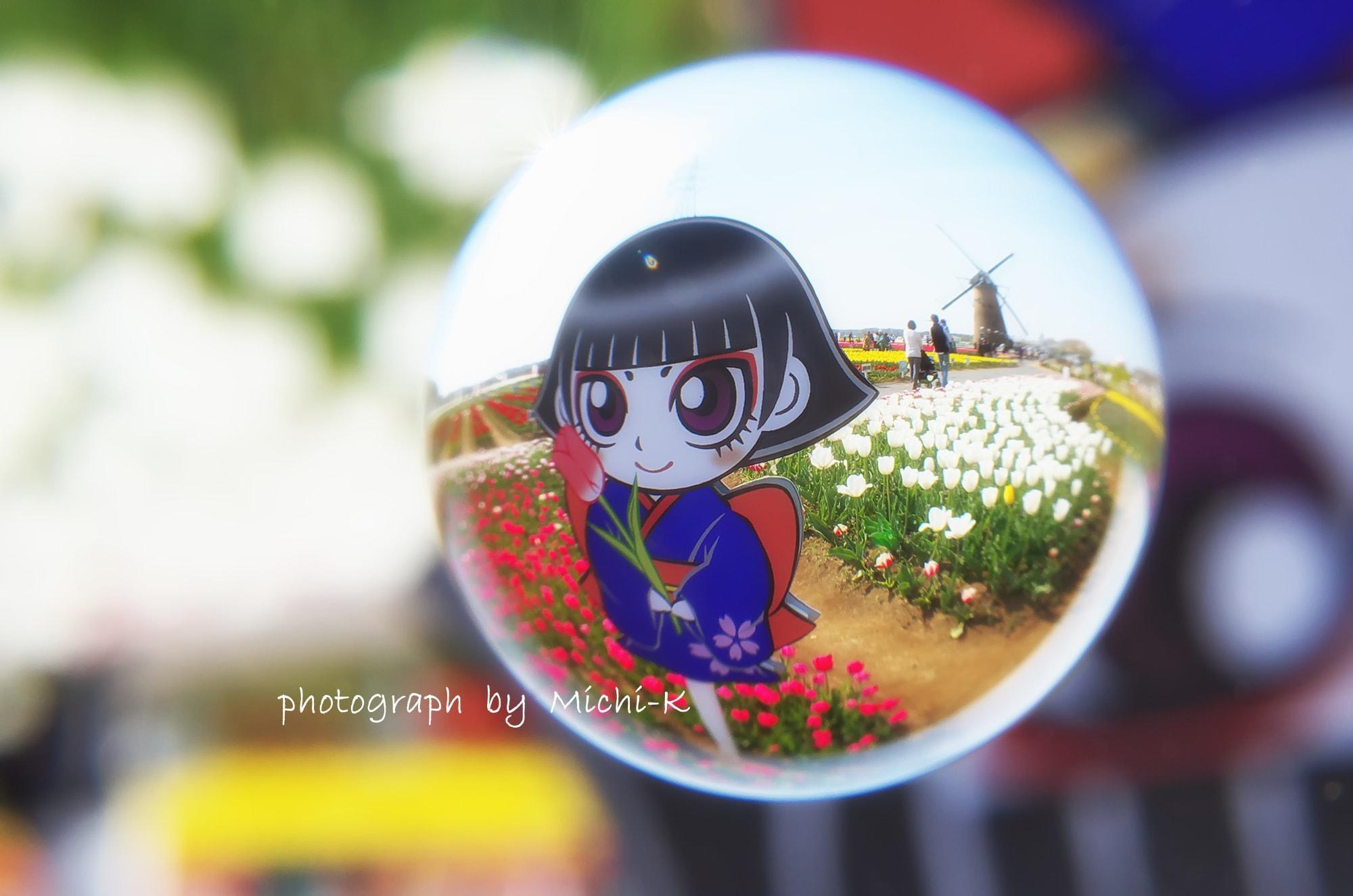 佐倉ふるさと広場チューリップ2016年4月-宙玉8