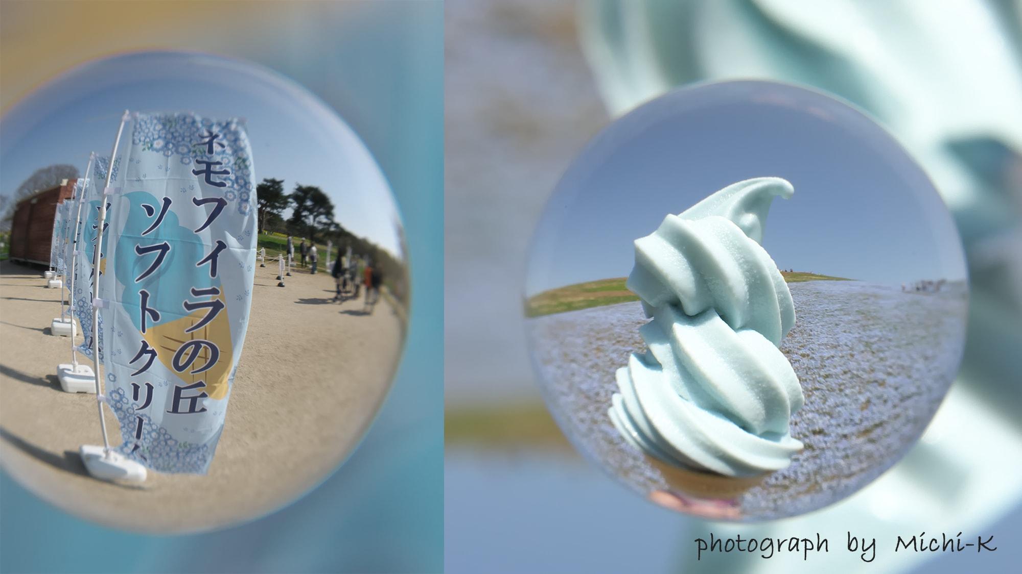 茨城県ひたちなか市「ひたち海浜公園」のネモフィラ-宙玉(そらたま)-5、ラムネ味のネモフィラ色のソフトクリームを売っていました
