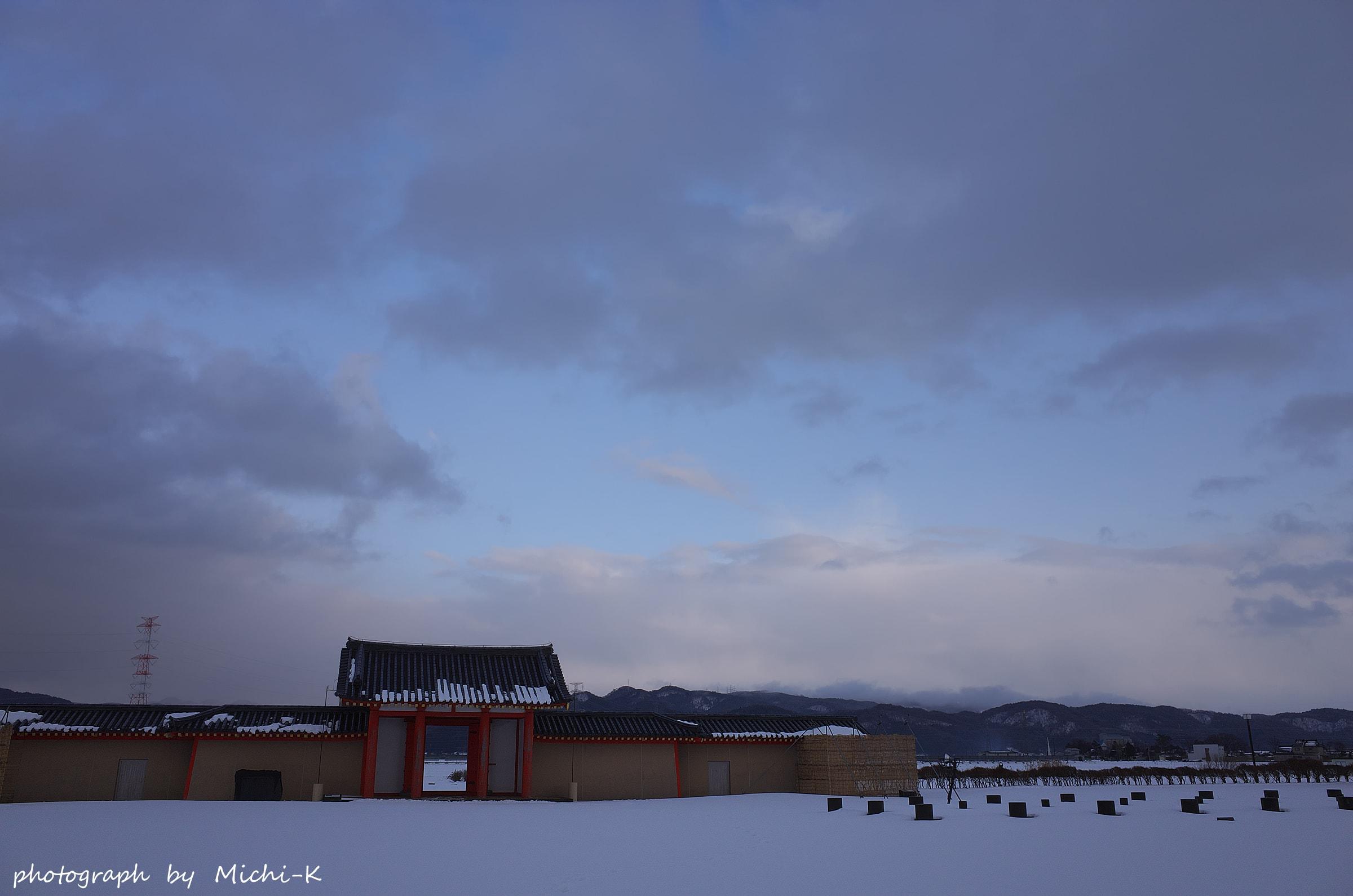 酒田市・城輪の柵跡6