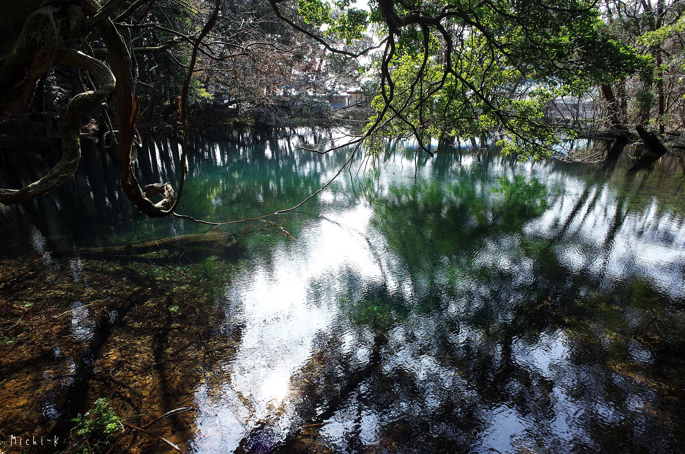 山形県遊佐町・丸池様3