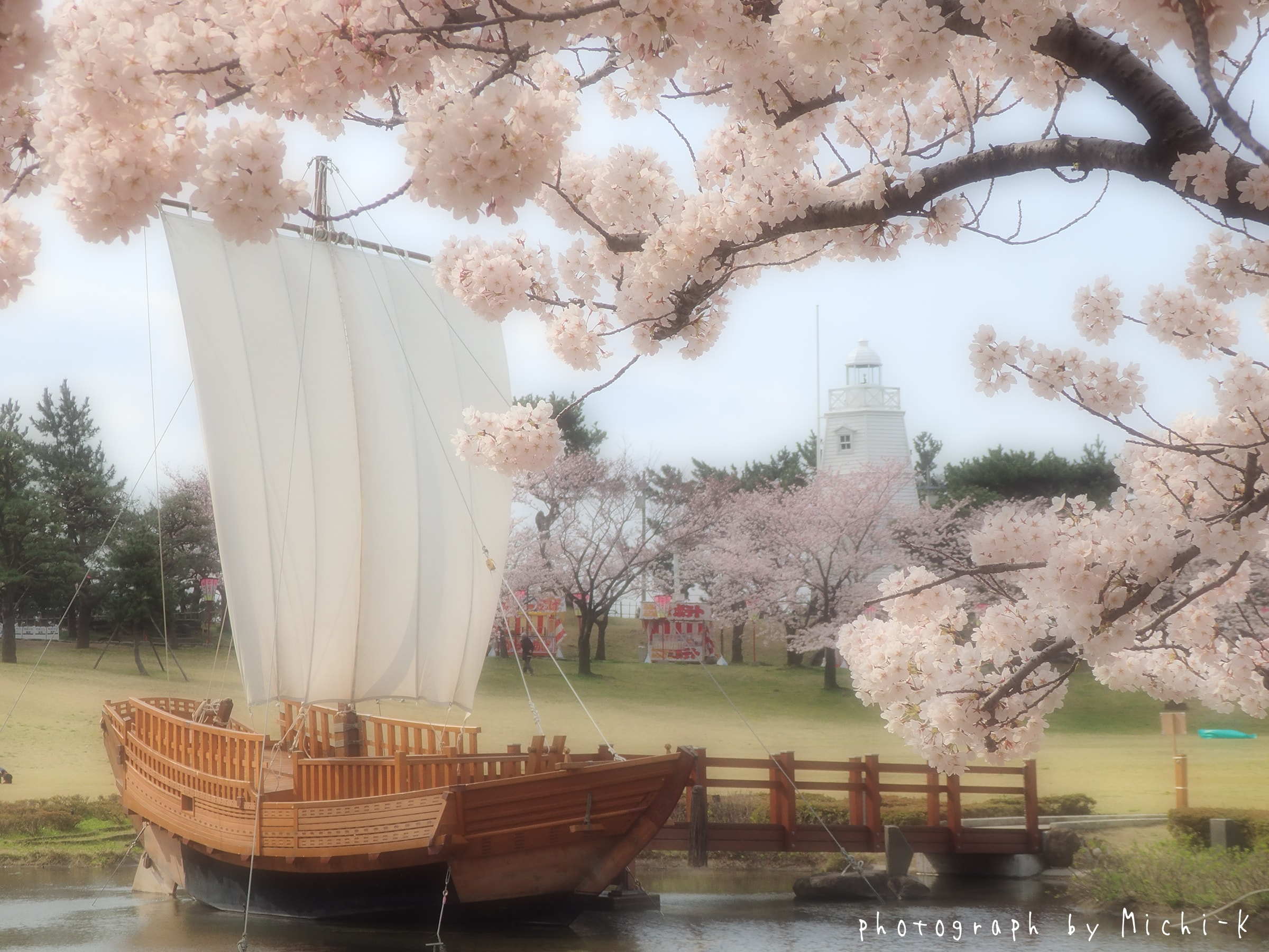 酒田市日和山公園、桜と灯台-2017/4/16 No.5