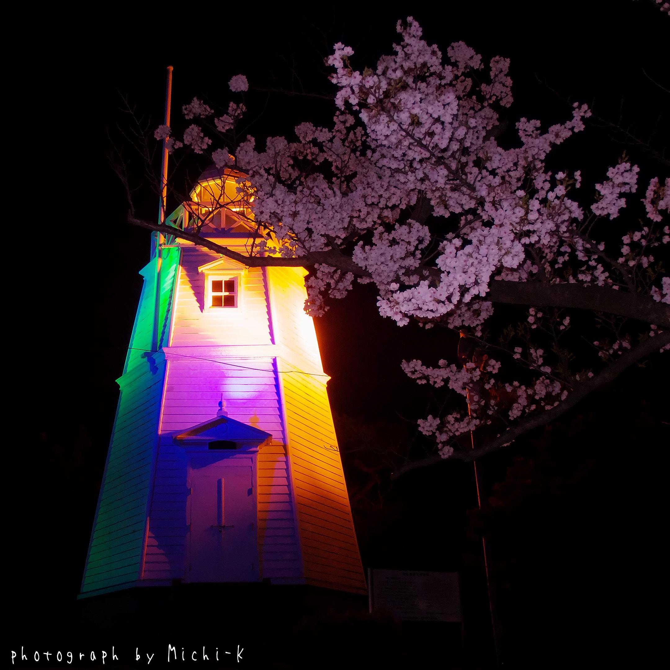 山形県酒田市-日和山公園-六角灯台と夜桜