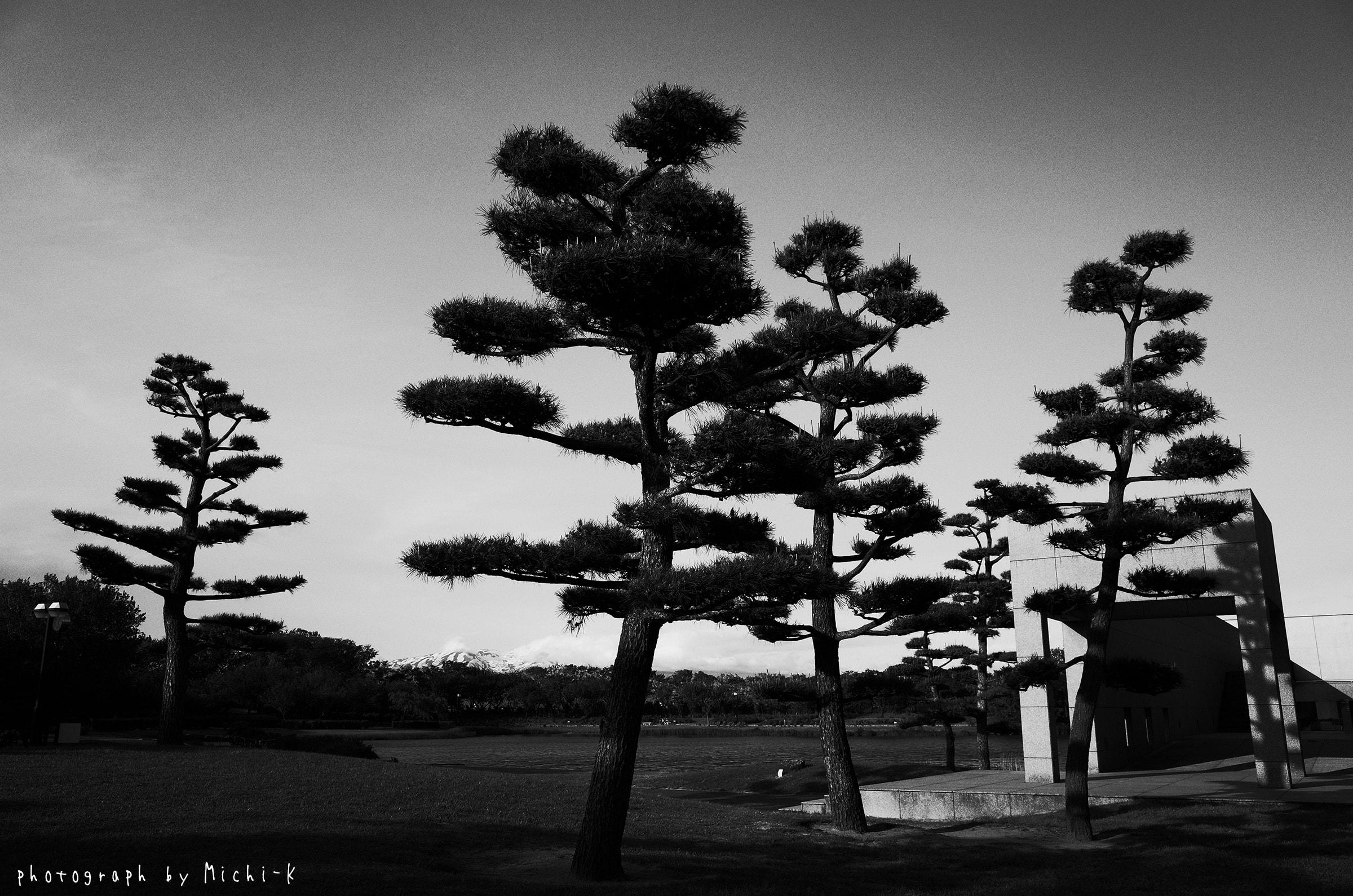 土門拳記念館-1(モノクロ)