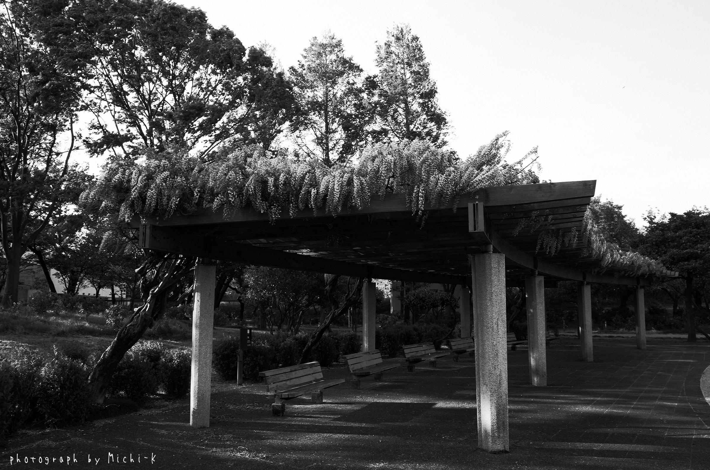 土門拳記念館-5(モノクロ)