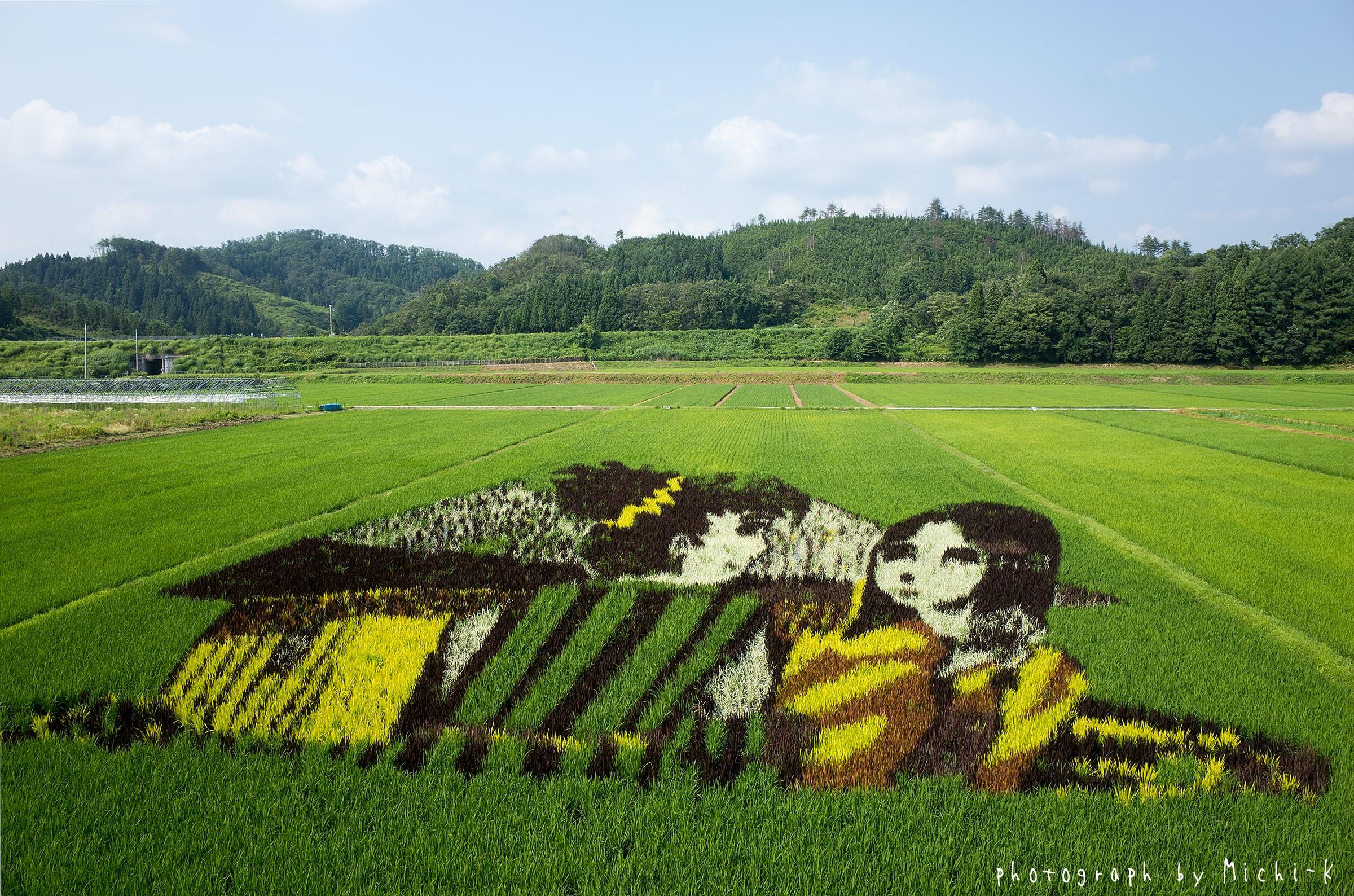 山形県尾花沢市田んぼアート2017その2