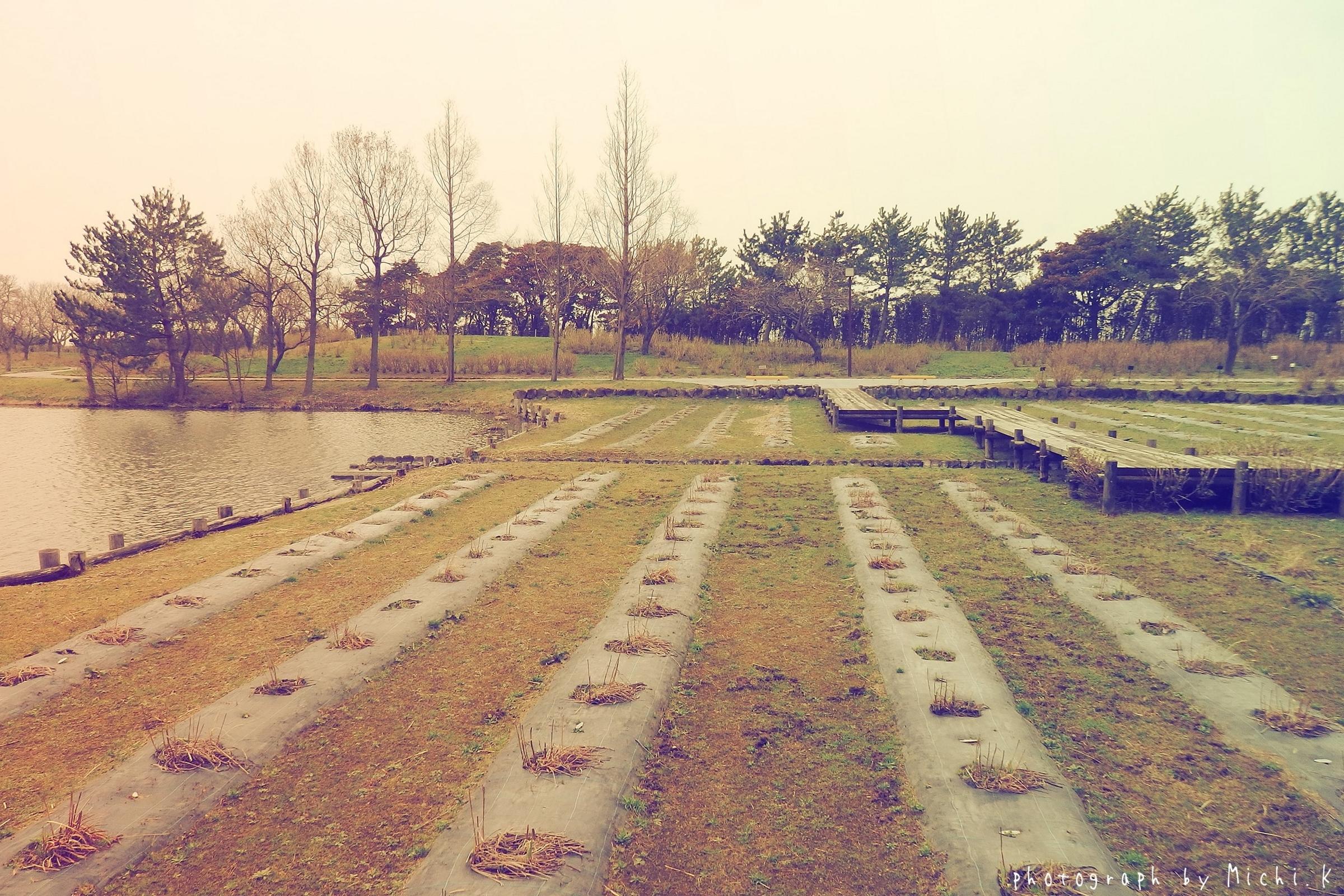 土門拳記念館(その5)