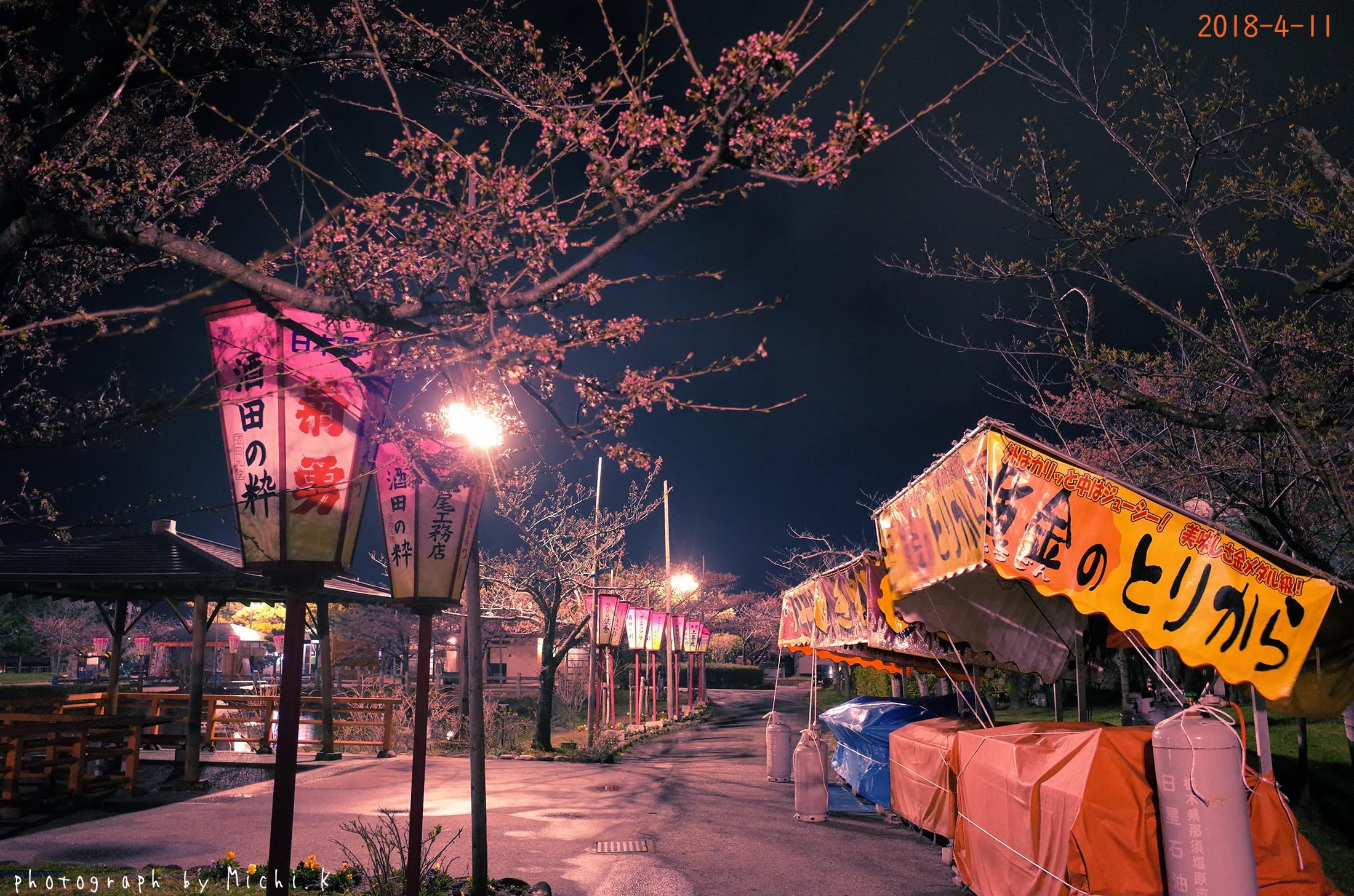 酒田市日和山公園2018-4-11