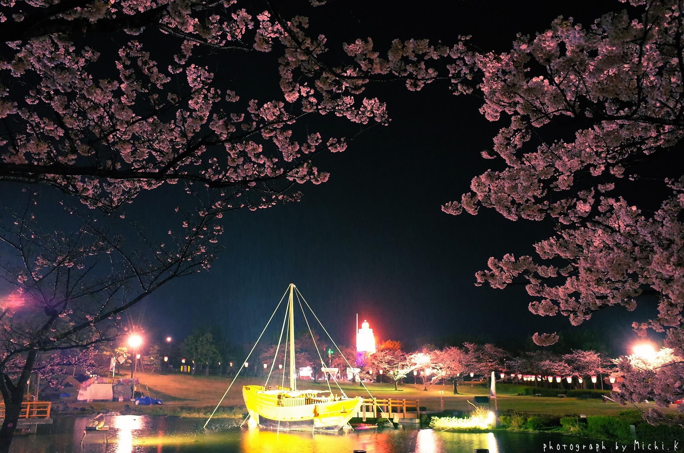 酒田市、夜桜の日和山公園2018-04-14(その1)