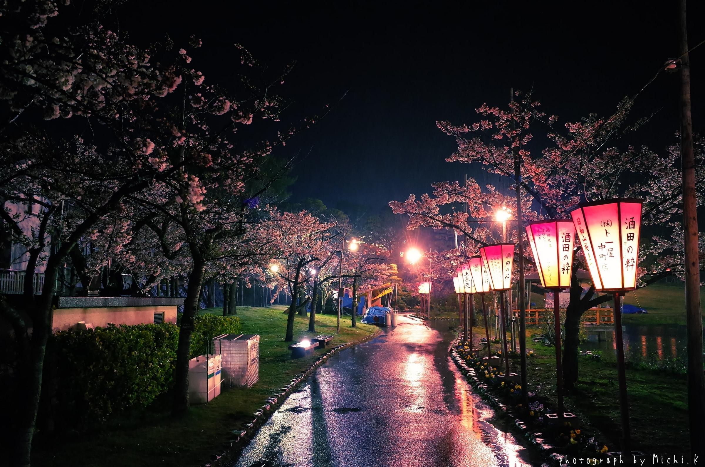 酒田市、夜桜の日和山公園2018-04-14(その2)