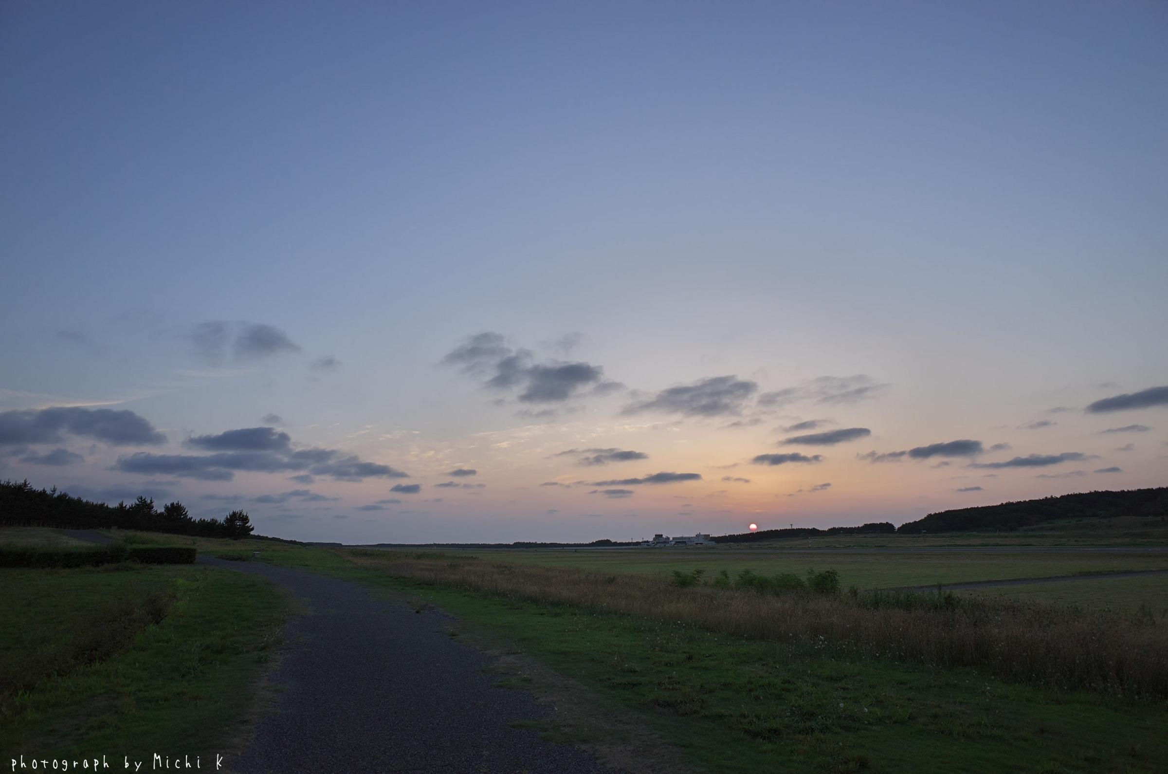 庄内空港緩衝緑地(写真その5)