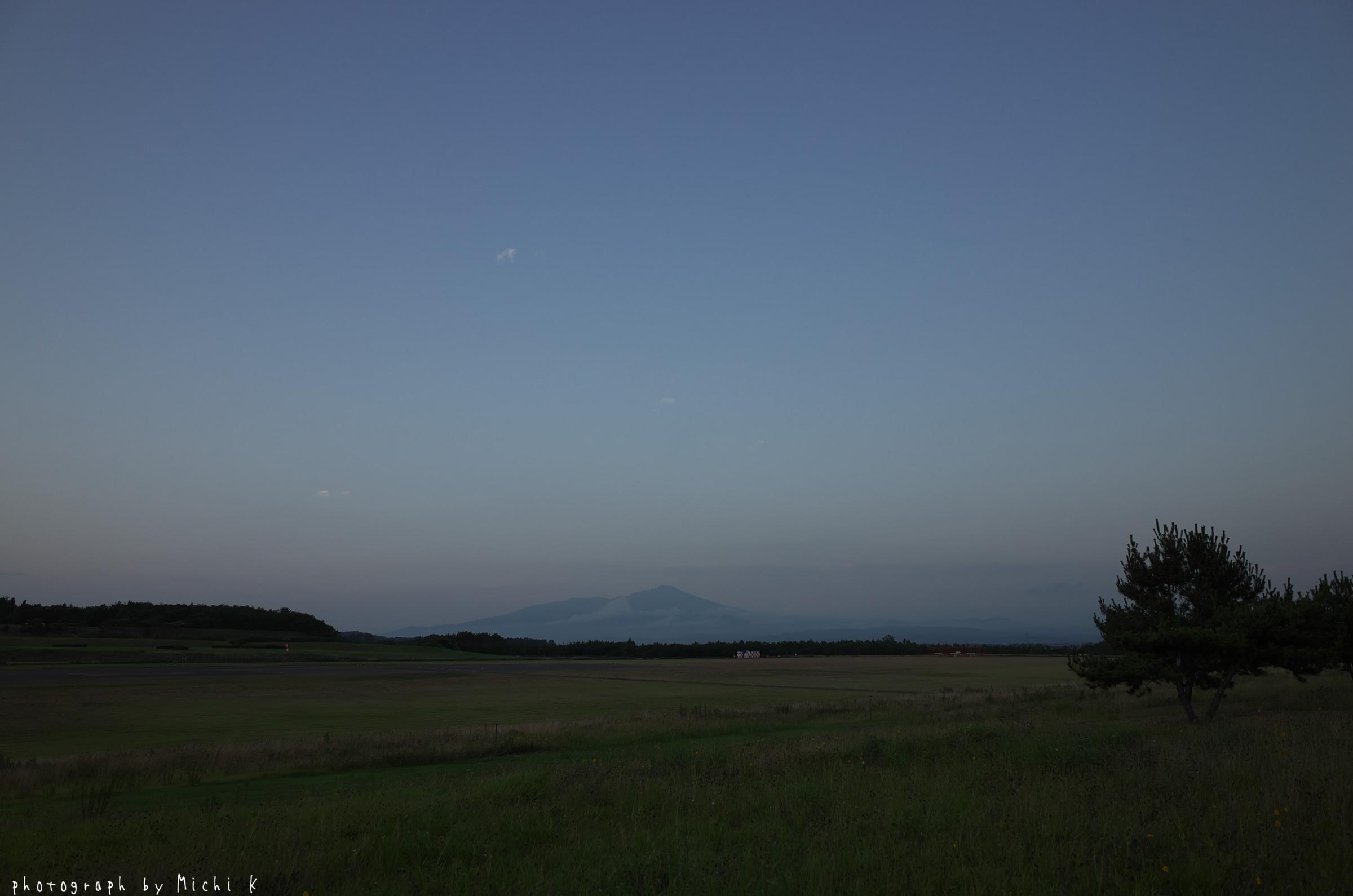 庄内空港緩衝緑地(写真その6)