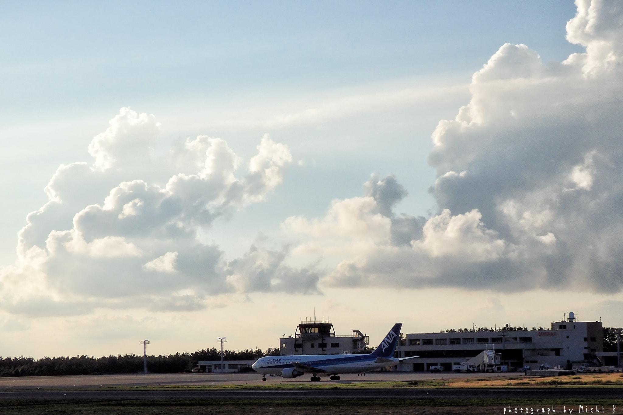 庄内空港緩衝緑地にて♯3(写真その2)