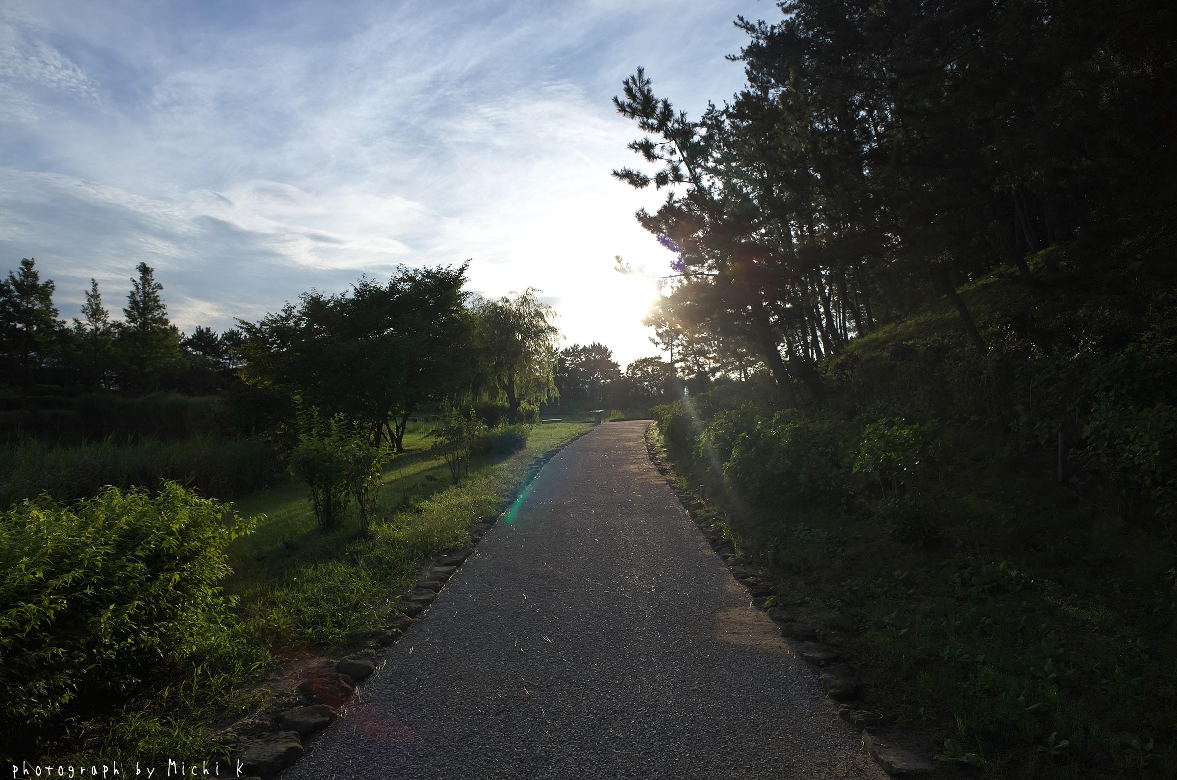 土門拳記念館2018-8-21早朝散歩(写真その3)