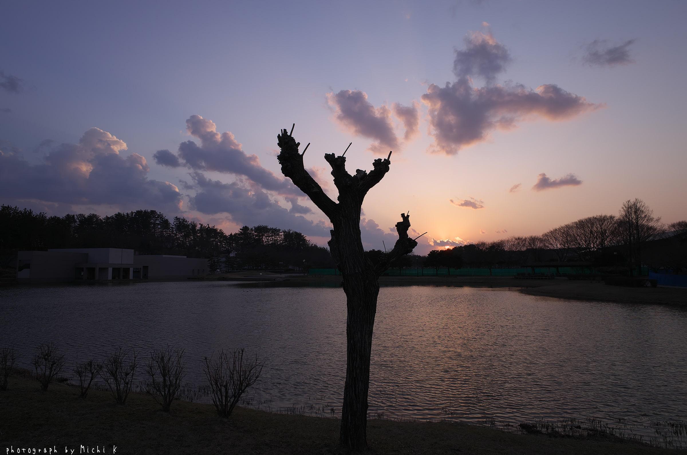 土門拳記念館にて2019-3-2夕方(写真その4)