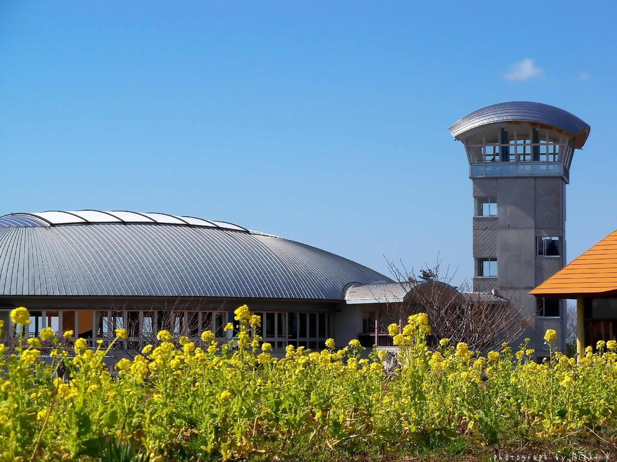 庄内町・風車村(写真その2)