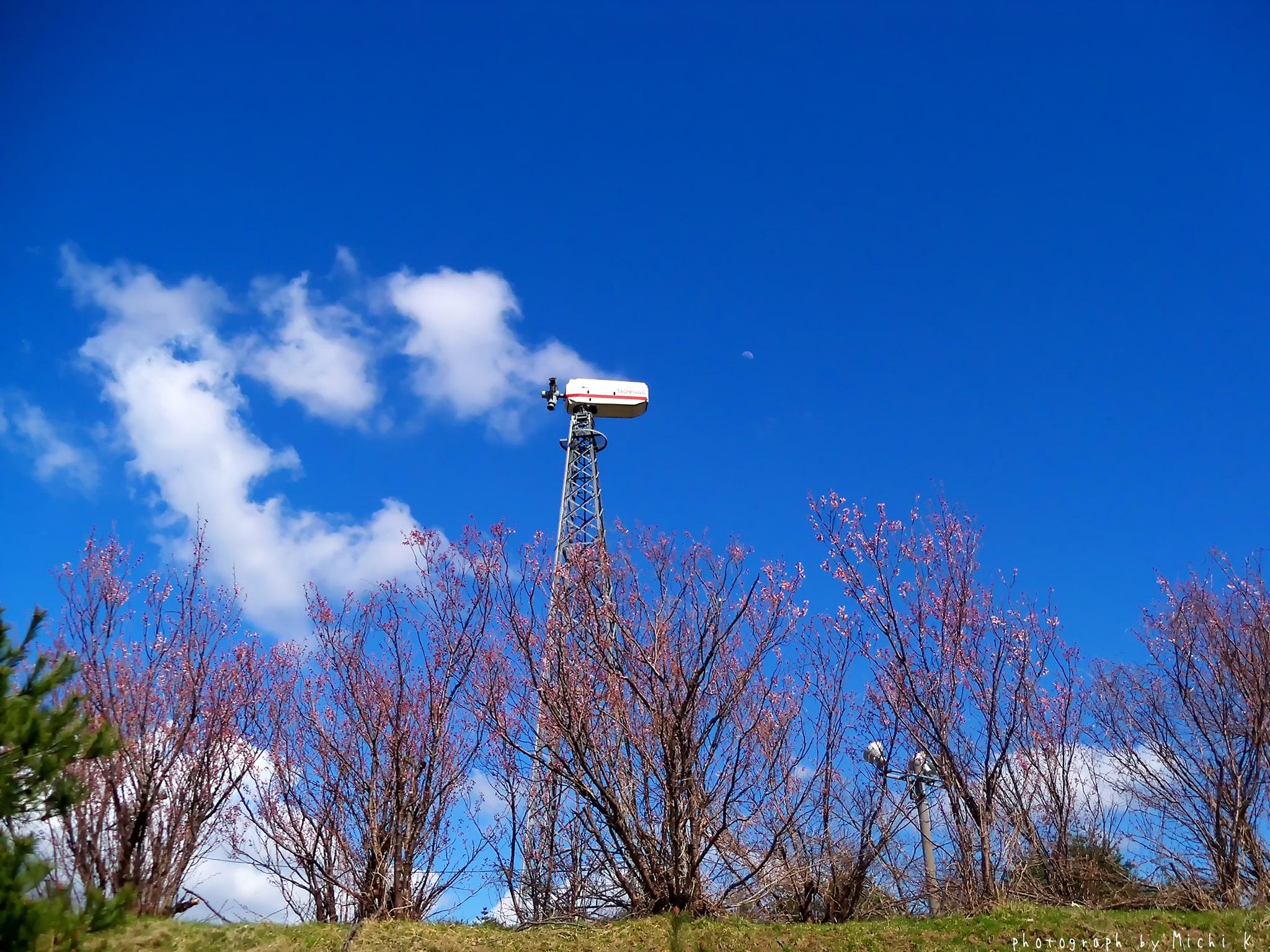 庄内町・風車村(写真その6)