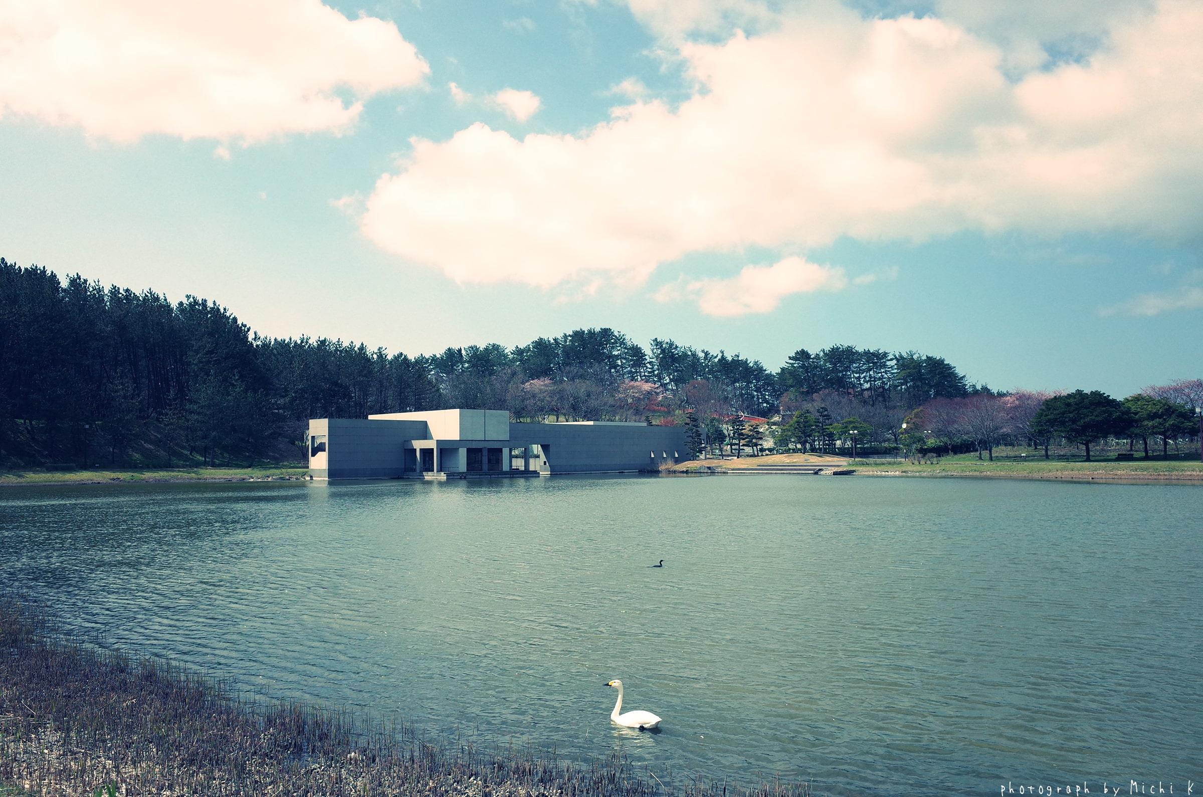 土門拳記念館2019-4-16(写真その2)