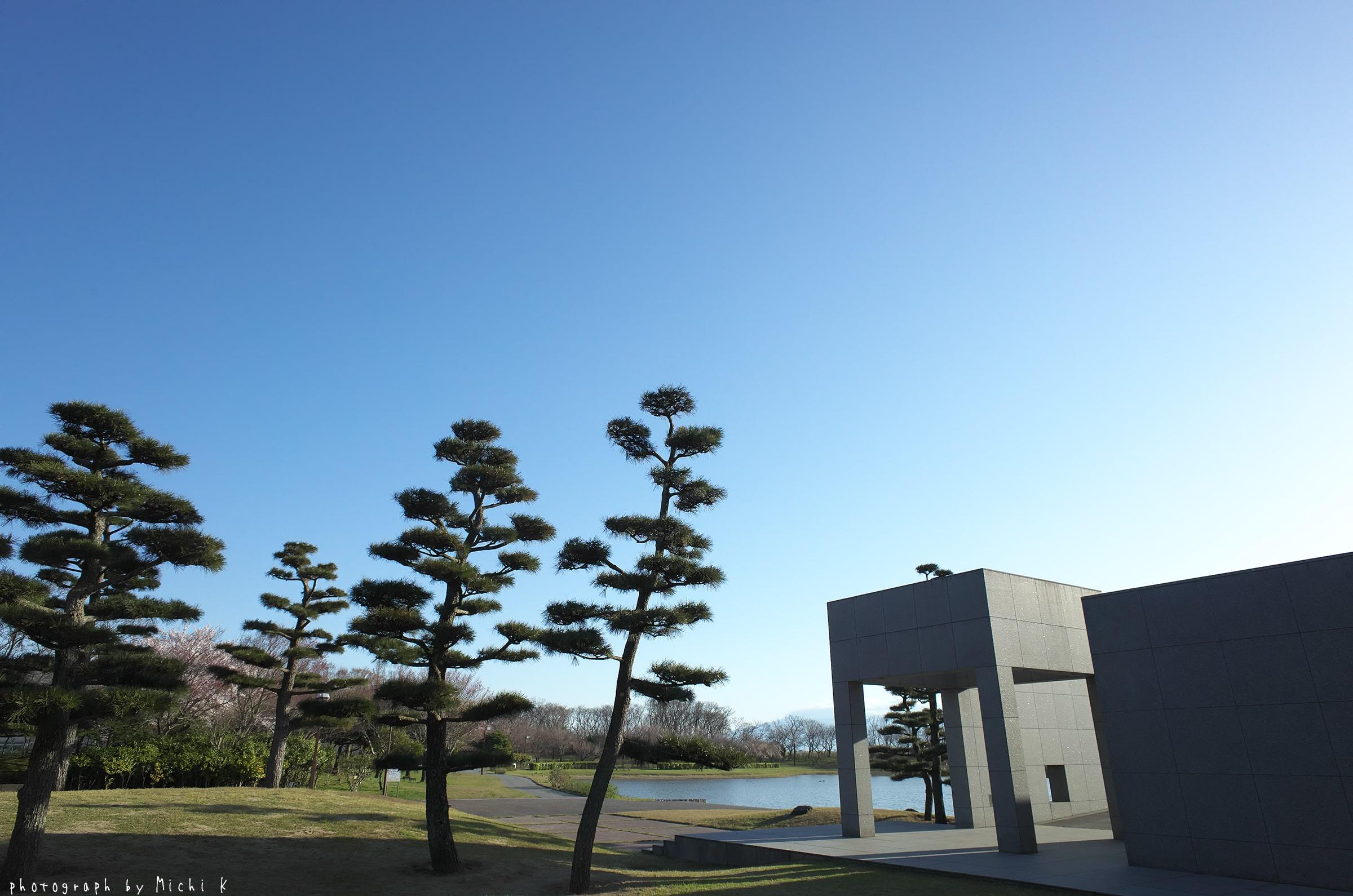 土門拳記念館2019-4-20 朝(写真その3)