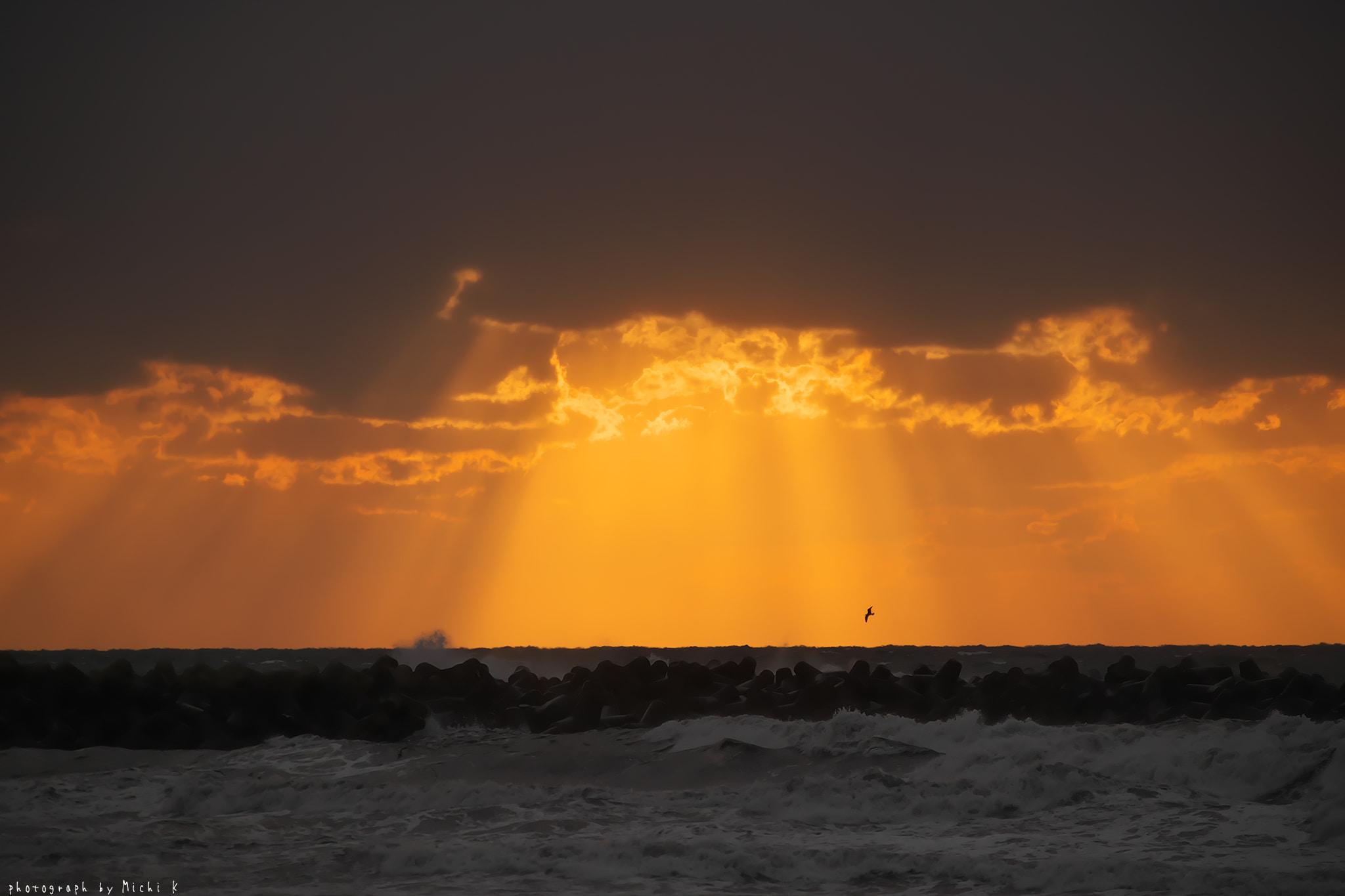 湯の浜海岸にて(写真その1)