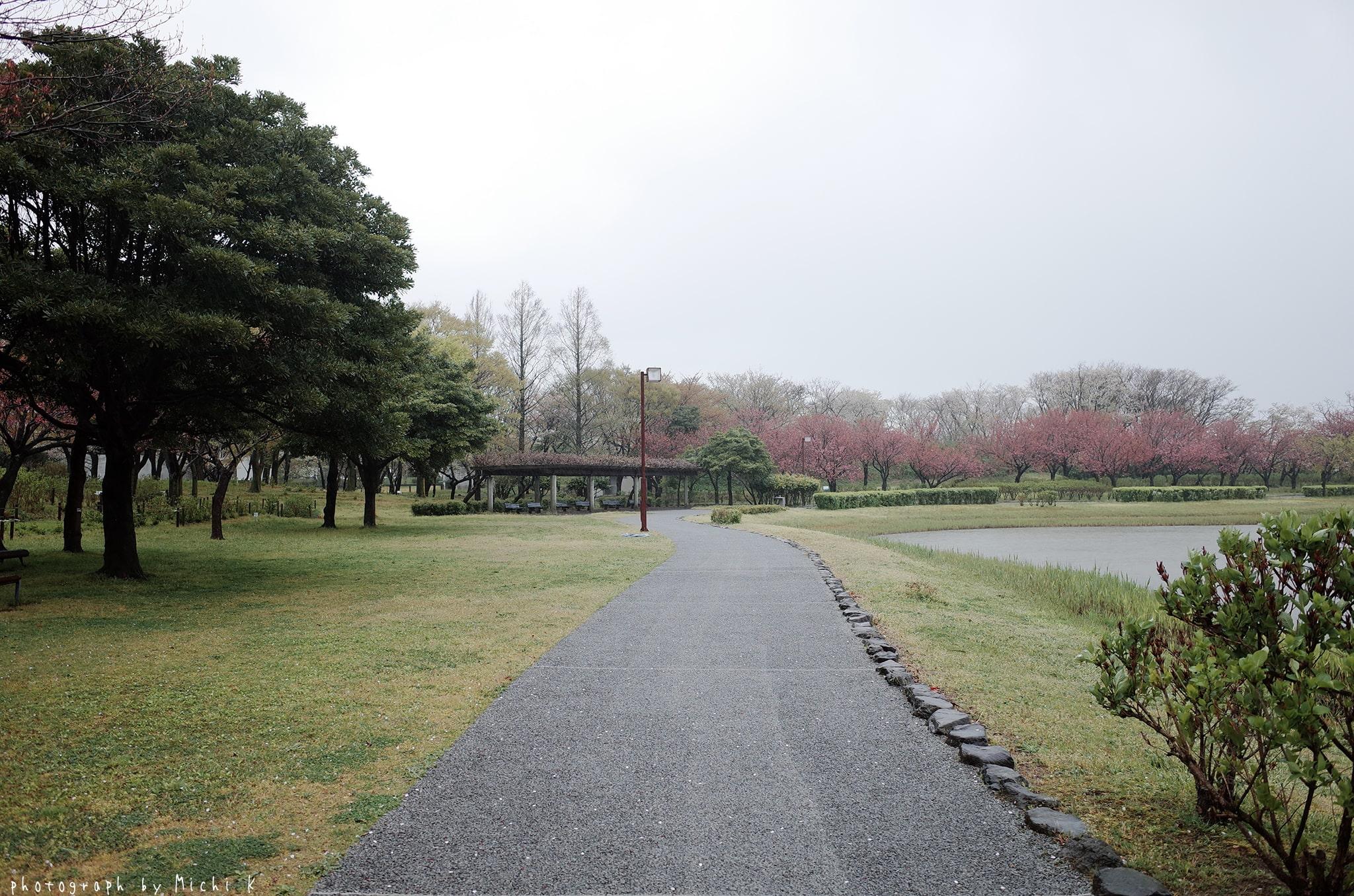 土門拳記念館2019-4-27朝(写真その2)