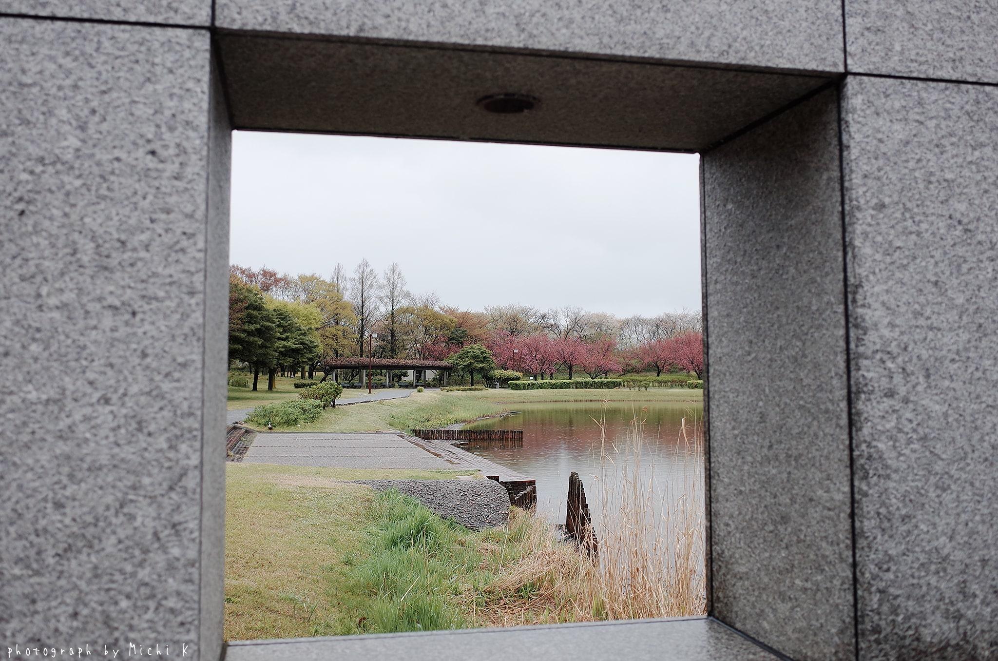 土門拳記念館2019-4-27朝(写真その8)
