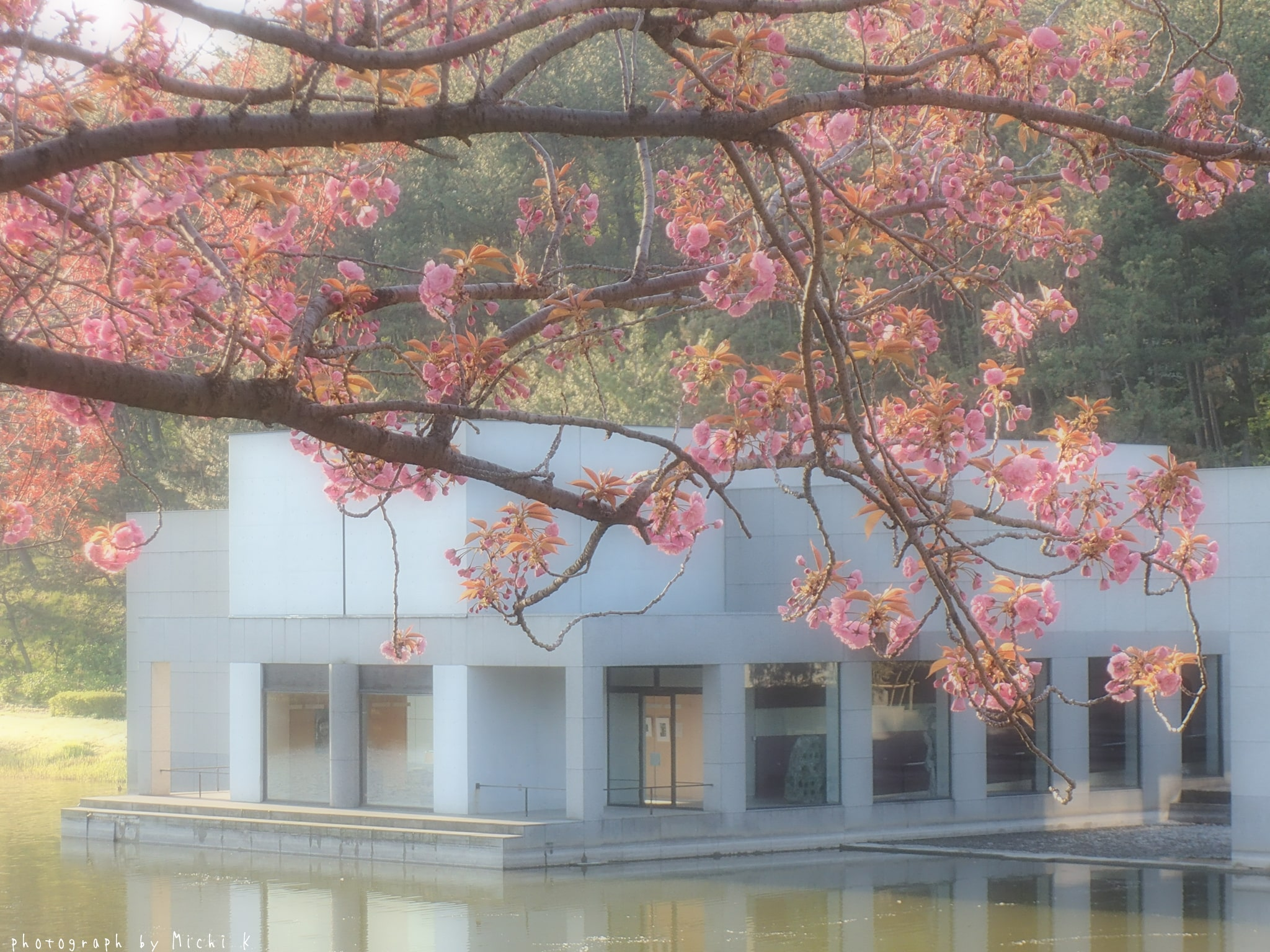 土門拳記念館にて2019年4月29日(写真その2)