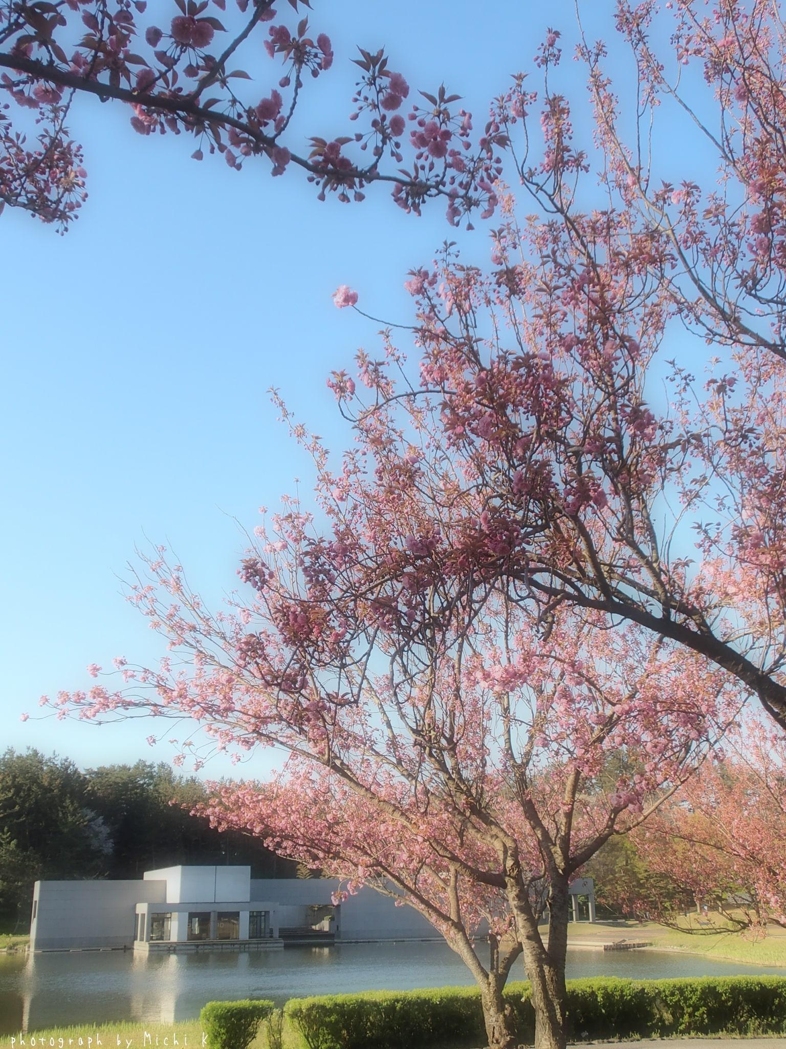 土門拳記念館にて2019年4月29日(写真その4)