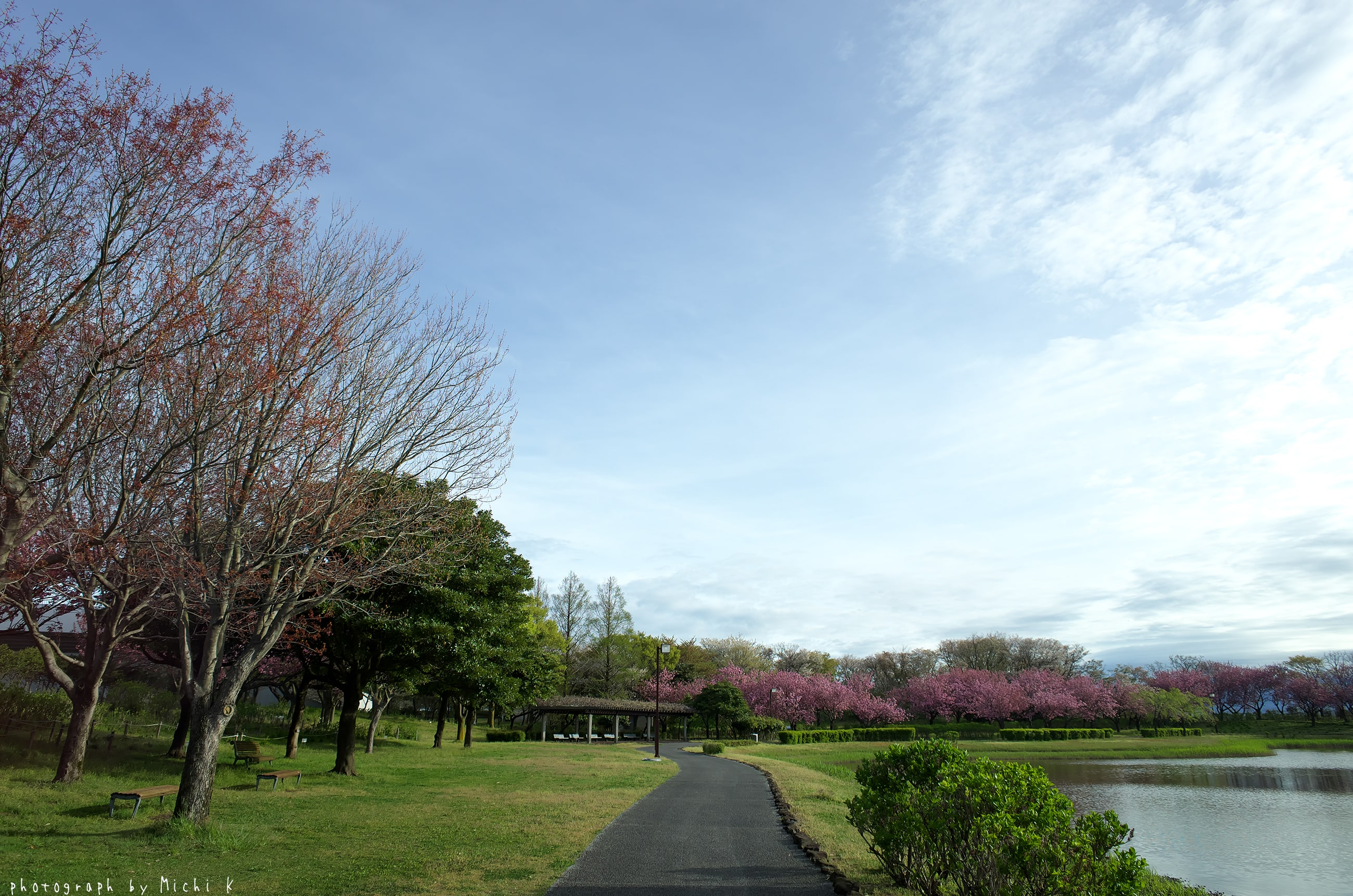 土門拳記念館にて2019-5-1朝(写真その4)