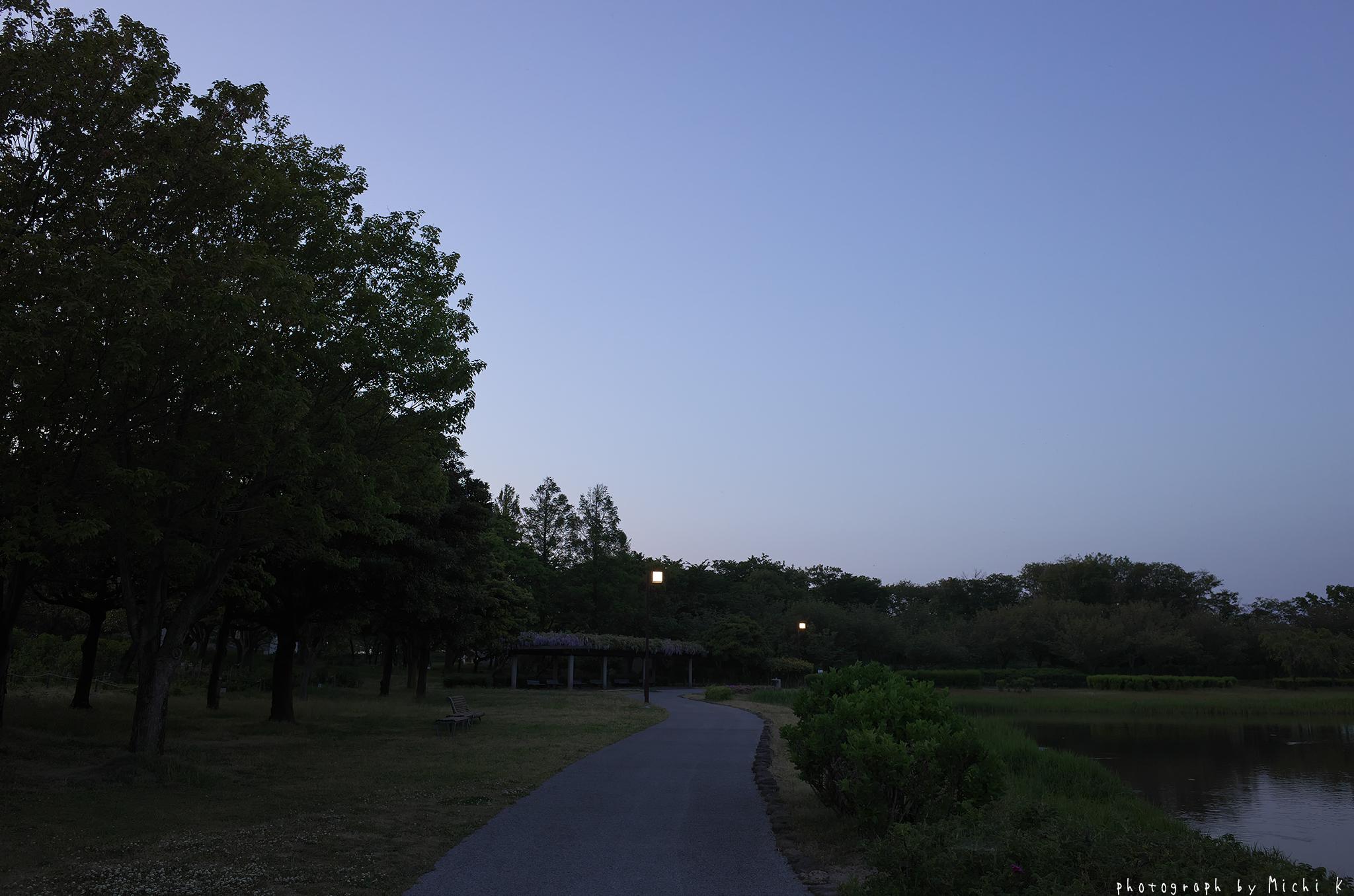 土門拳記念館2019-5-16日没後(写真その3)