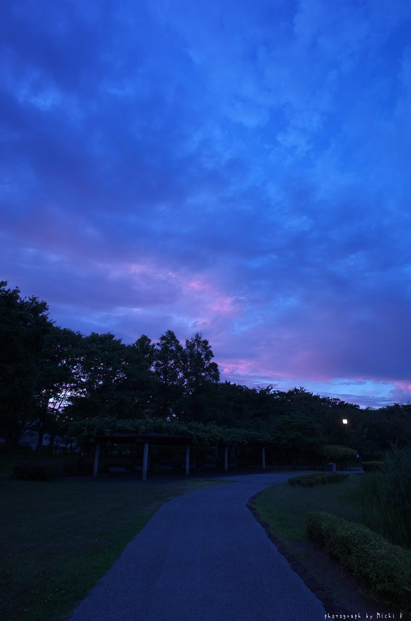 土門拳記念館2019-7-27夕方(写真その8)