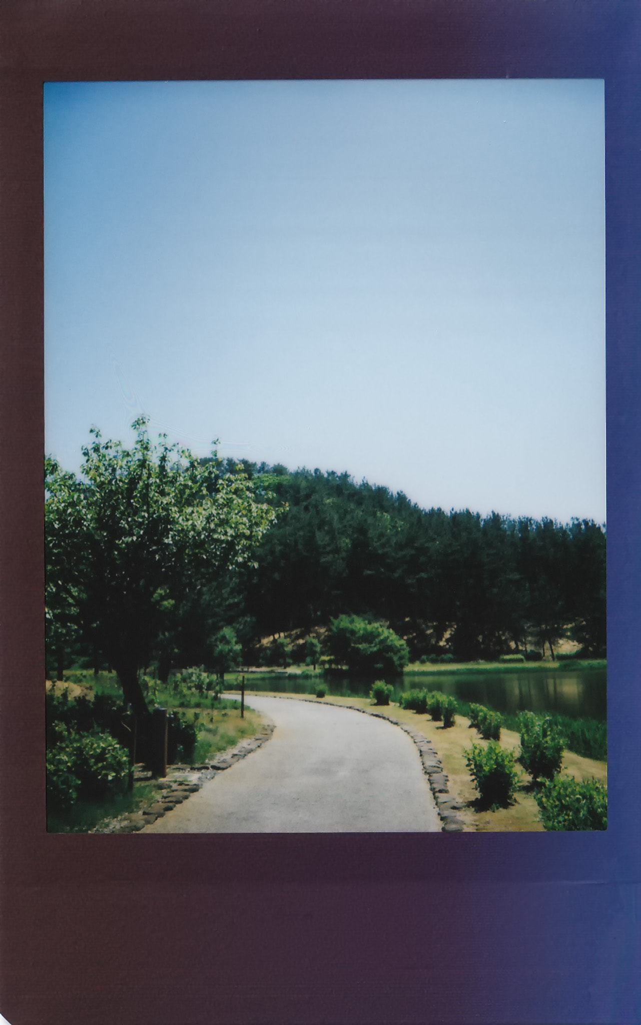 土門拳記念館にて2020-5-30 チェキフィルムにて撮影(その4)