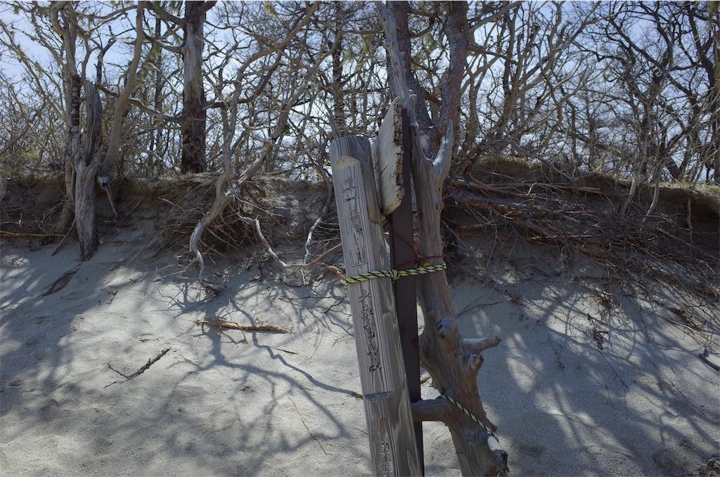 f:id:michi-trail:20190508224525j:image