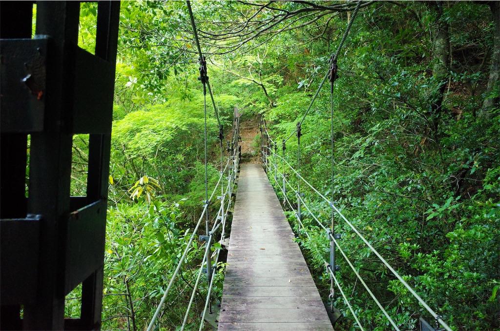 f:id:michi-trail:20190514204416j:image
