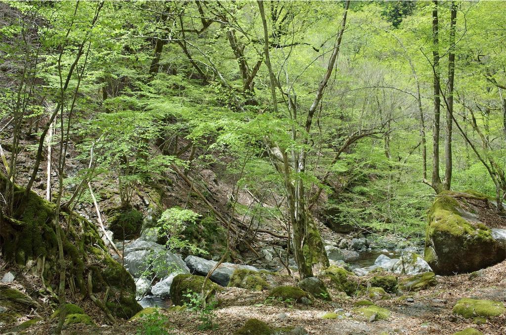 f:id:michi-trail:20190519201218j:image