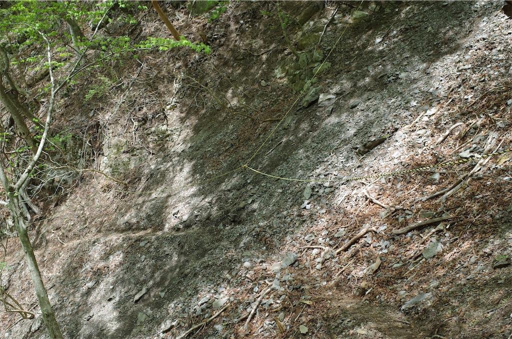 f:id:michi-trail:20190519201440j:image