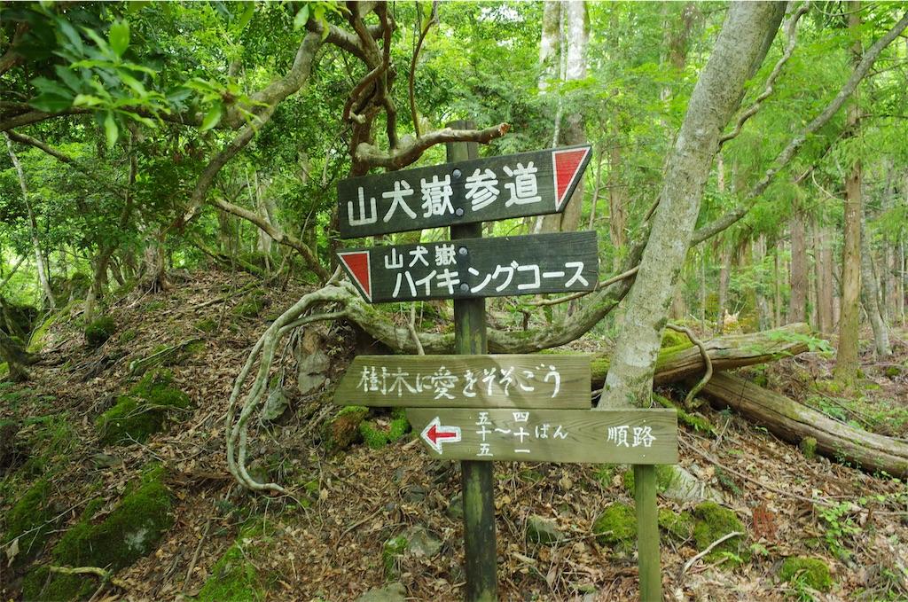 f:id:michi-trail:20190604200645j:image