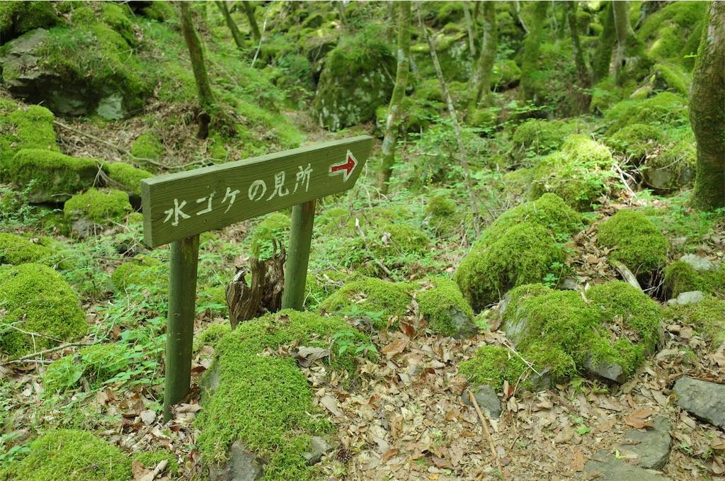 f:id:michi-trail:20190604200728j:image