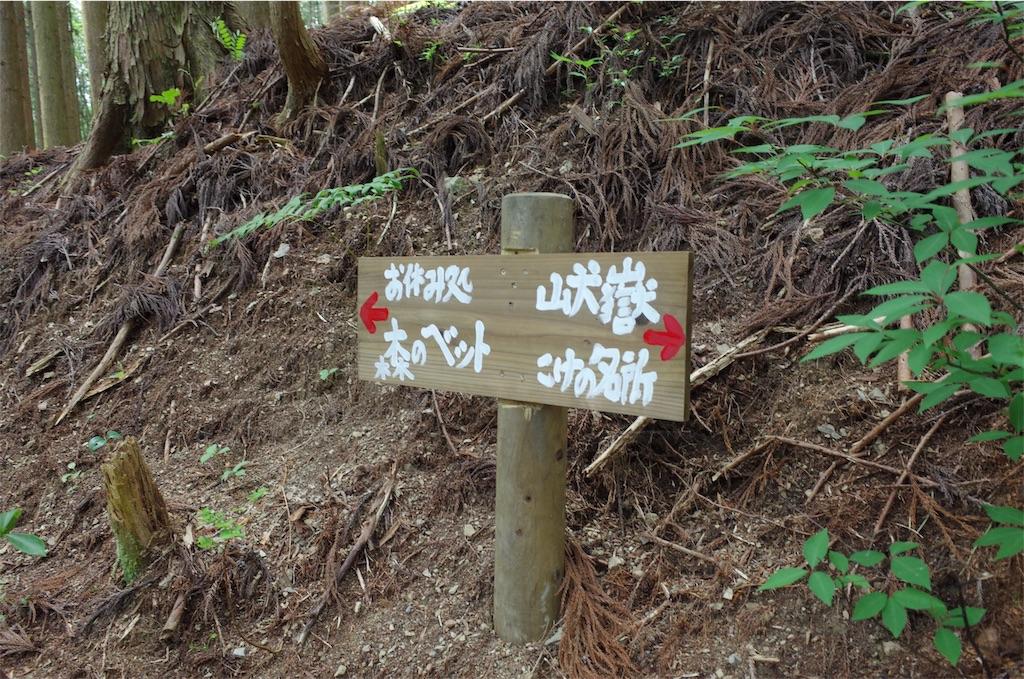 f:id:michi-trail:20190604200810j:image