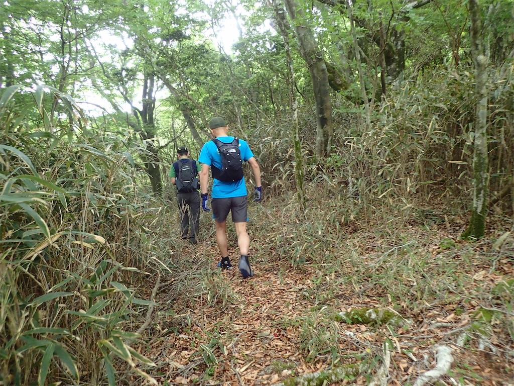f:id:michi-trail:20190606202713j:image