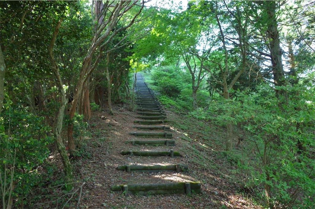 f:id:michi-trail:20190609204811j:image