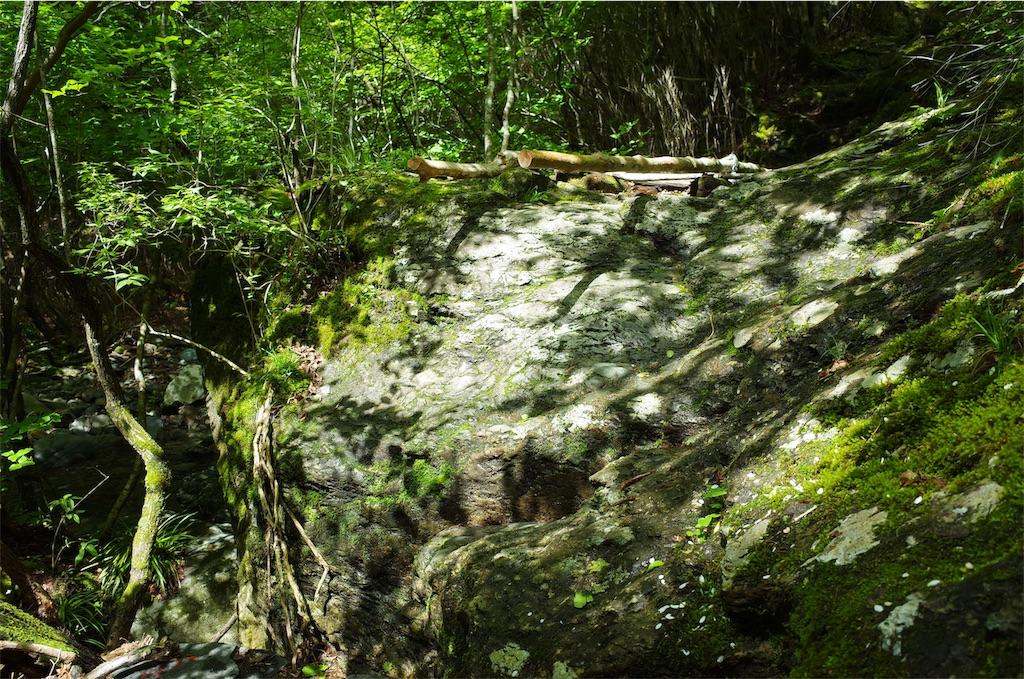 f:id:michi-trail:20190629185057j:image