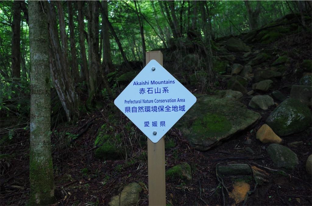 f:id:michi-trail:20190629185107j:image