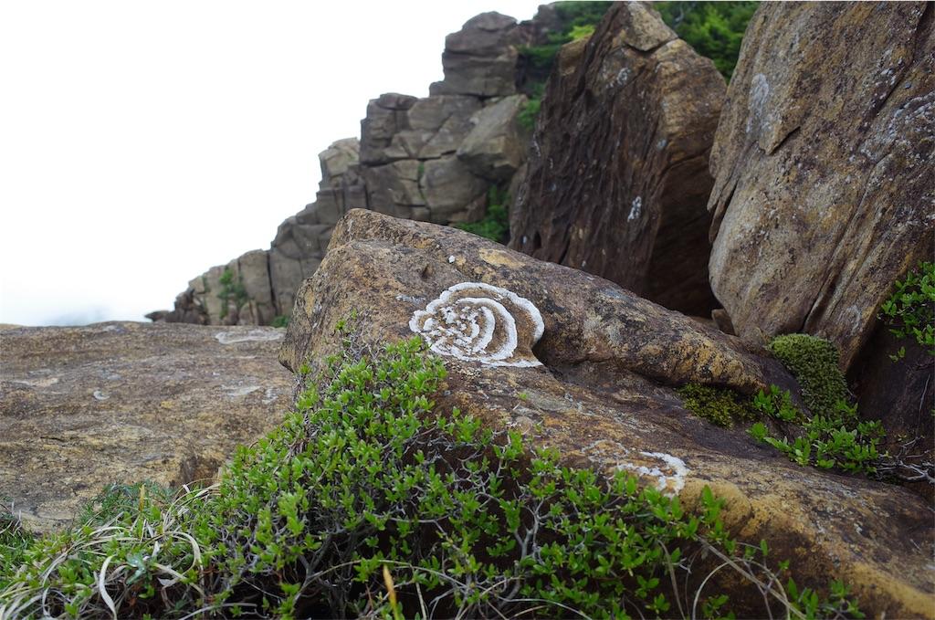 f:id:michi-trail:20190629185138j:image